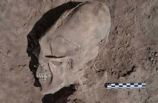 http://www.dailymail.co.uk/sciencetech/article-2250145/The-incredible-alien-skull-discovered-Mexican-cemetery.html